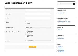WordPress User Registration Stats Form