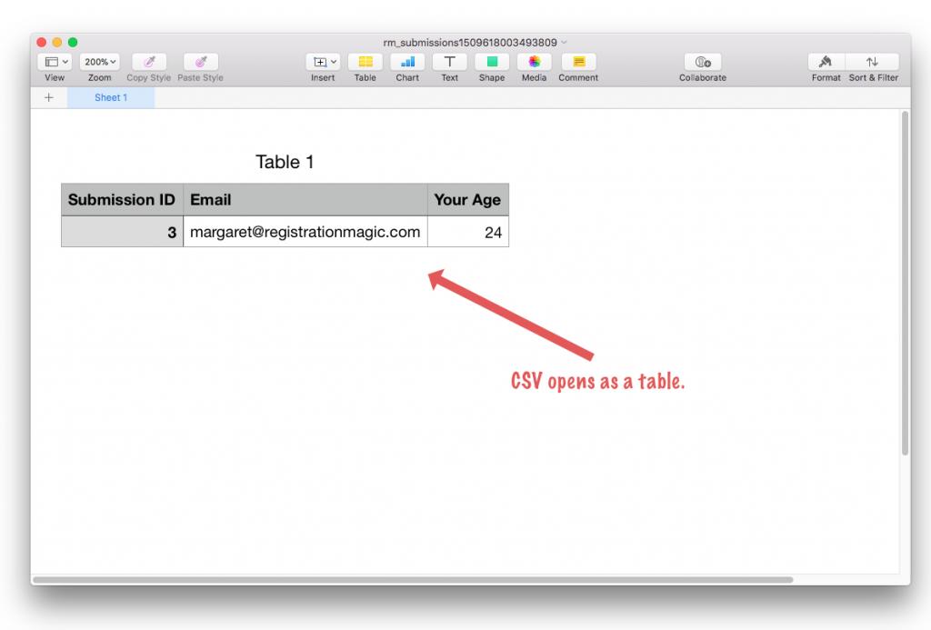 WooCommerce CSV file opened as spreadsheet