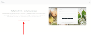 Landing Pages publish template